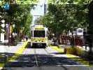 photo of Sacramento LRT street, trees